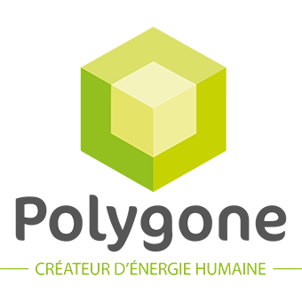 logo polygone groupe